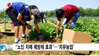 """""""노인 치매 예방에 효과""""…'치유농업…"""