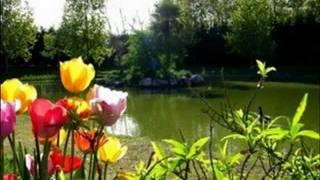 Domaine Le Jardin du Marais - Le Perrier - Vendée