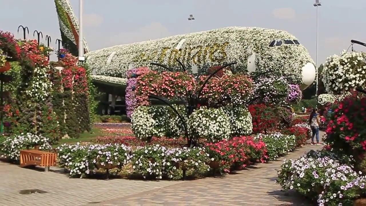 my mom\'s trip to dubai miracle garden - YouTube