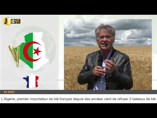 Quel est le potentiel de production de blé en France ?