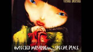 Watch Infected Mushroom Special Place video