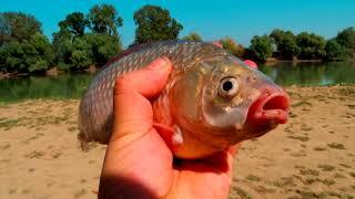 рыбалка на Кубани 2017 в сентябре видео welcometoanapa.ru