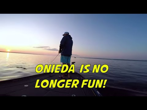 Oneida Lake FLW BFL Practice And Tournament!