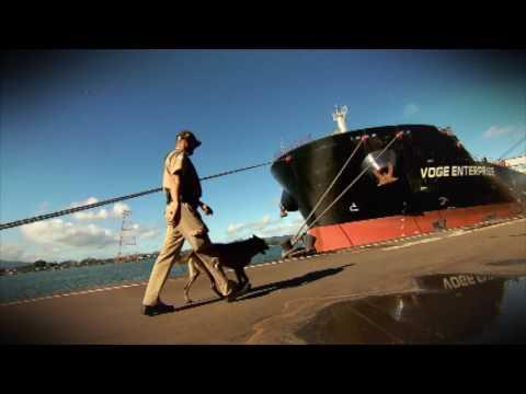 Câmera Record Mostra Como Funciona O Maior Porto Da América Latina
