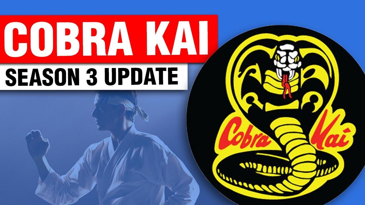 Cobra Kai Season 3 Update   ART OF ONE DOJO