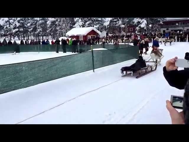 Nordkapp Vintertur 2015 - Video 15 - Renrace (Slow)