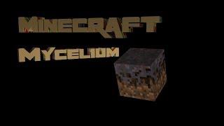 How Does Minecraft Work - Ep 048 - Mycelium