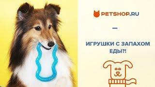 видео Товары для животных интернет-магазин Москва, СПб