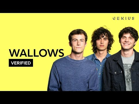 "Wallows ""Are You Bored Yet?""   & Meaning  Verified"