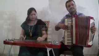 Ye Ladka Hai Allah Instrumental | Hawaiian Guitar | Accordion