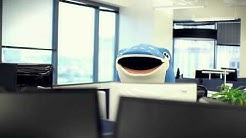 Tilted Chair Creative Austin Ad Agency - WhaleShark Band