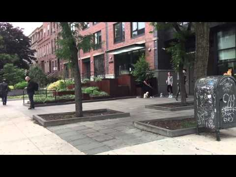 Carroll St Station, Carroll Gardens, Brooklyn, New York (6-5-15)