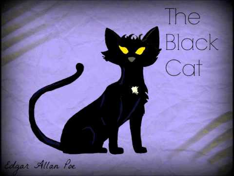 Critical Analysis of The Black Cat by Edgar Allan Poe