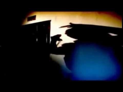 Lady Sovereign Random Remix Video
