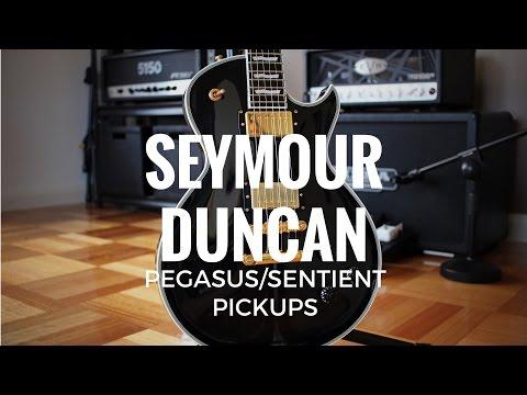 Seymour Duncan Pegasus/Sentient Pickups - Demo w/ EVH 5150III