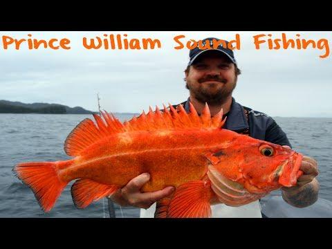 Prince William Sound Bottom Fishing