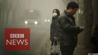 China smog: 'Sky dark from air pollution'  - BBC News