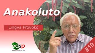 Lingva Provoko n-ro 19 (Anakoluto)