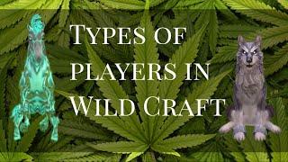 WildCraft типы игроков