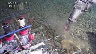 南鳥島沖の排他的経済水域内の深海底に広大なマンガンノジュール密集域を発見〜三種の酸化物海底資源の包括的な成因解明のための手掛かり〜
