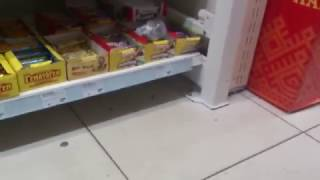 MOV 0472 - Тараканы в магазине