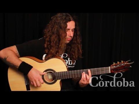Basic Flamenco Guitar Techniques - Ben Woods