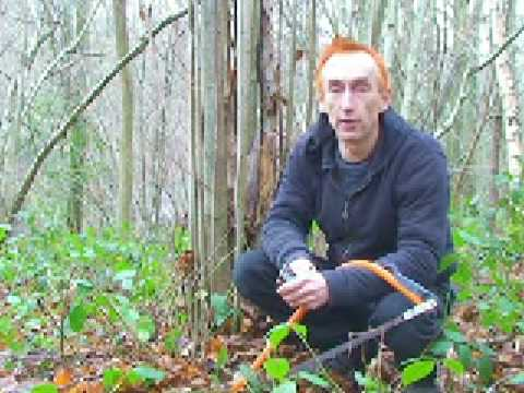 Coppicing Wood to make a Yurt - a Shamans Life - by Youtubeshaman.com
