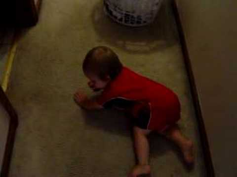 All three types of Crawling