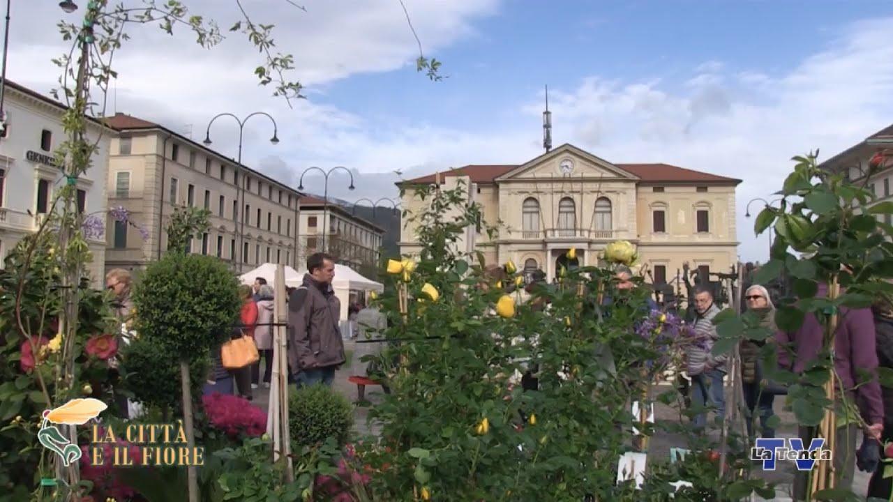 La città e il fiore 2019