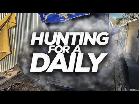 "Project Daily [Ep.5] ""Hunting for a New Daily!"""