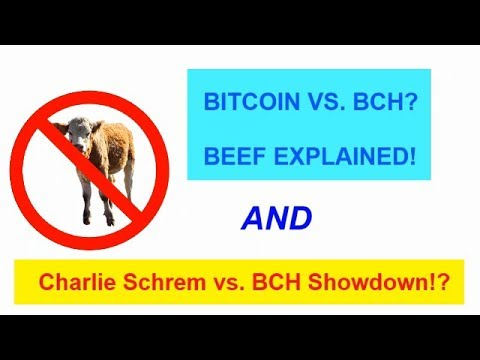 BTC vs BCH - Charlie Shrem and BCH BEEF! EXPLAINED!