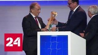 Россия примет чемпионат мира по волейболу в 2022 году - Россия 24