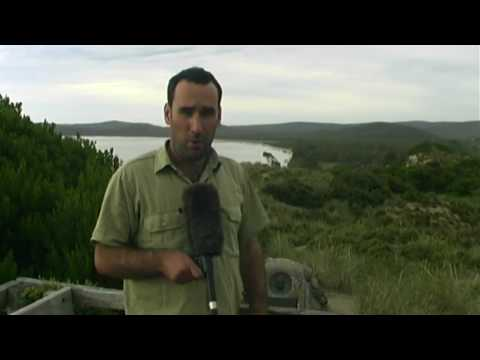 Bruny Island, Tasmania Travel Video Guide