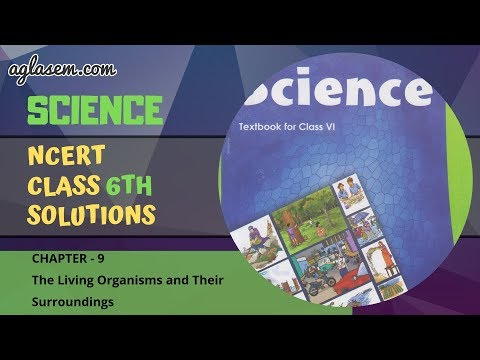 NCERT Solutions Class 6 Science Chapter 9: The Living Organisms and Their Surroundings