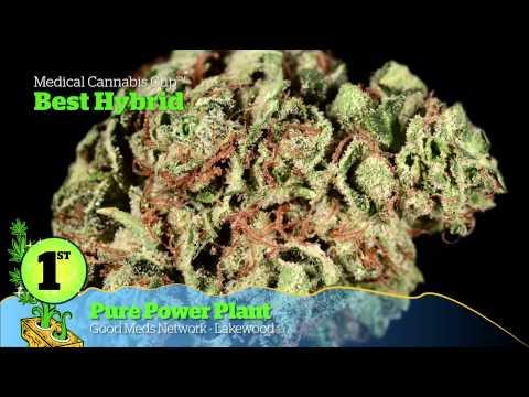 2014 HIGH TIMES Denver US Cannabis Cup Award Winners