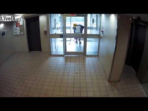 Liveleak - Pit bull attacks and kills smaller dog