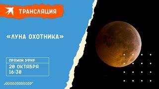 «Луна охотника» 20 октября 2021 года: прямая трансляция