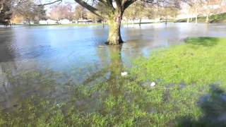 Thames-Abingdon Flood 2014