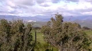 Elektrownie wiatrowe KROWY, BYDŁO, ZWIERZĘTA Hiszpania