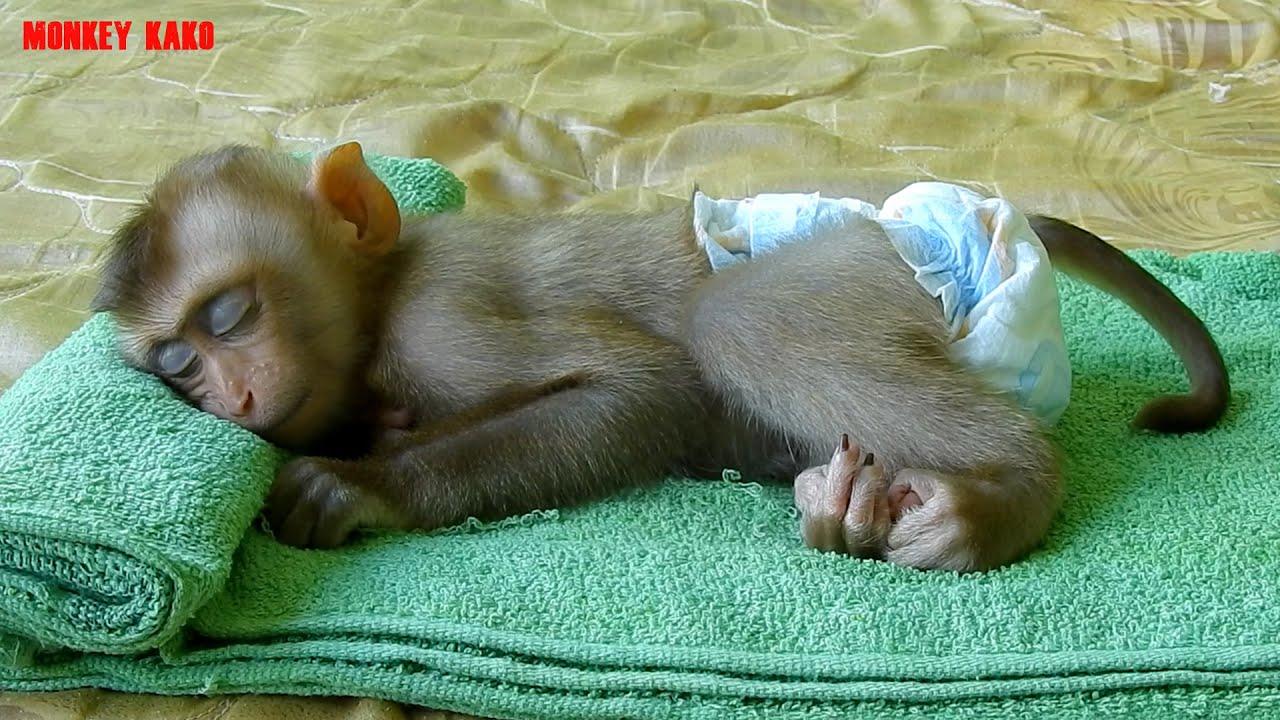 Cute Baby Luna Enjoy Relaxing Massage And Sleep