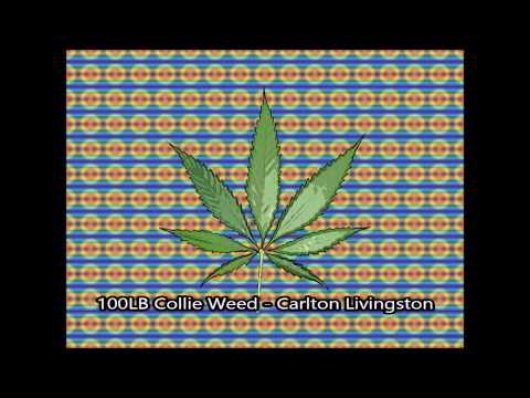 100lb Of Collie Weed  - Carlton Livingstone   (Reggae)
