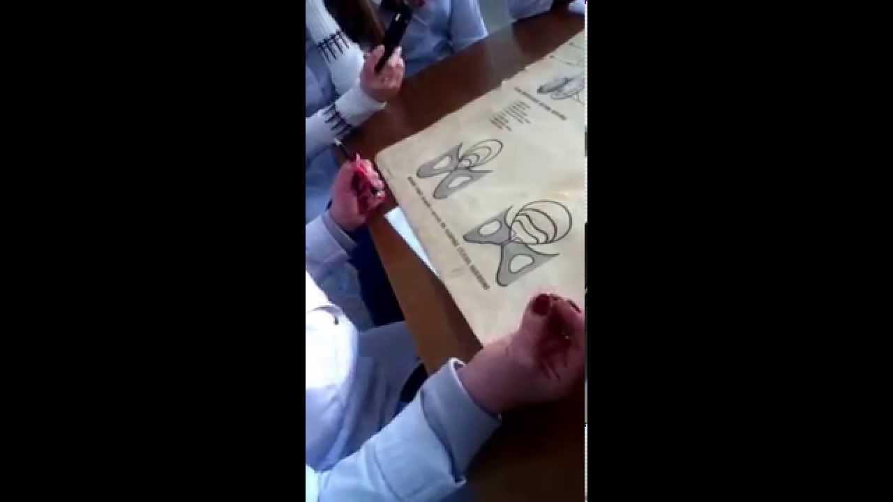 Відео як правильно бритити хуй фото 763-722