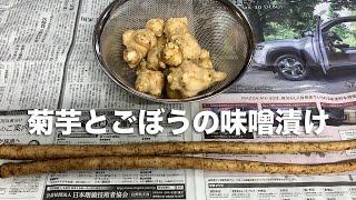 【ルンルンの裏庭】お父さん菊芋とごぼうの味噌漬けを作る