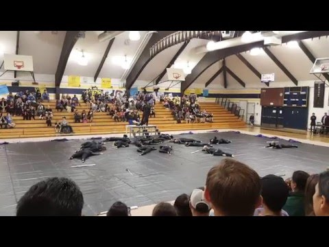 Spanish Springs High School Winter Guard 2016