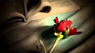 Romantic Instrumental Music