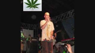 Yo Fumo (I Love Marihuana) - De La Ghetto Ft Cultura Profetica (Wily) [Con Letra/Lirica]