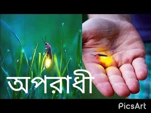 Oporadhi maiya re maiya re tui oporadhi bangla new song Arman arif  smart views