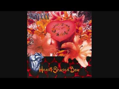Vitamin String Quartet- Heart Shaped Box (Nirvana)