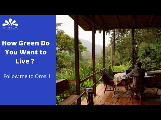 How Green do You Want to Live ? Follow me to Finca La Isabela in the Orosi Valley
