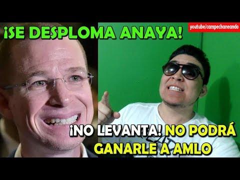 Ricardo Anaya ¡Se Desploma! Ya no puede ganarle a López Obrador - Campechaneando